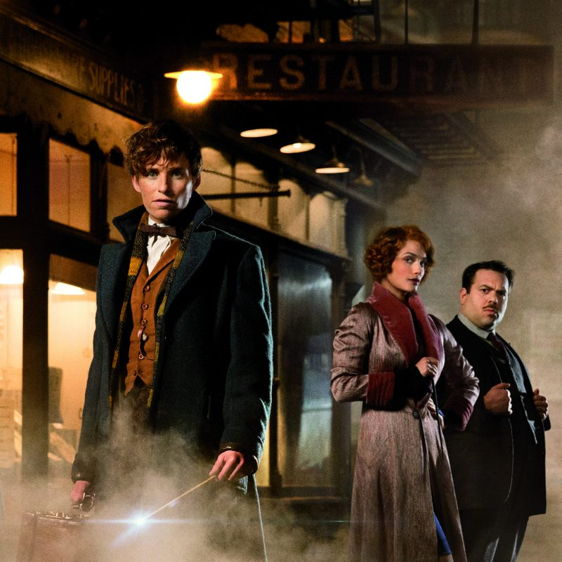 review Fantastic Beasts