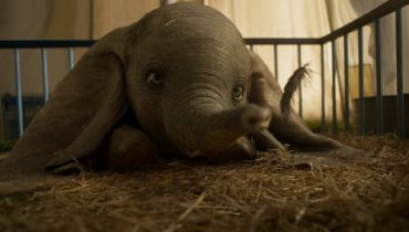 De eerste trailer van Dumbo is zó vertederend! #trailertip