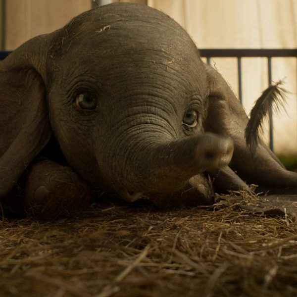 trailer van Dumbo